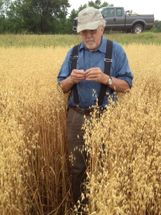 Checking the Oats 7/17