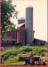 C2-1994 overgrown weeds in yard and pasture don't affect boys having fun.jpg