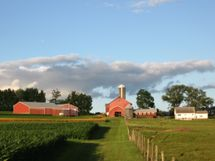 C12-2012 from west looking east, grassy lane, healthy pasture, flourishing crops-COMPRESSED.jpg