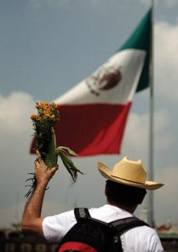 Mexican corn pic with Flag.jpg
