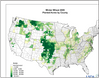 Winter_Wheat_2009_Planted_by_County.png