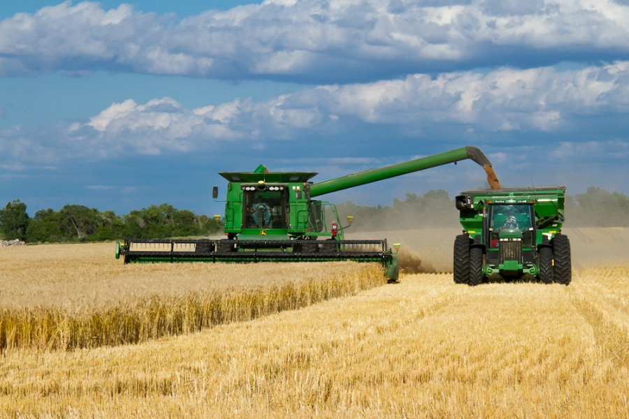 Wheat Harvest 2013-6.jpg