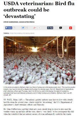 Associated Press Article - Turkey Farm.JPG