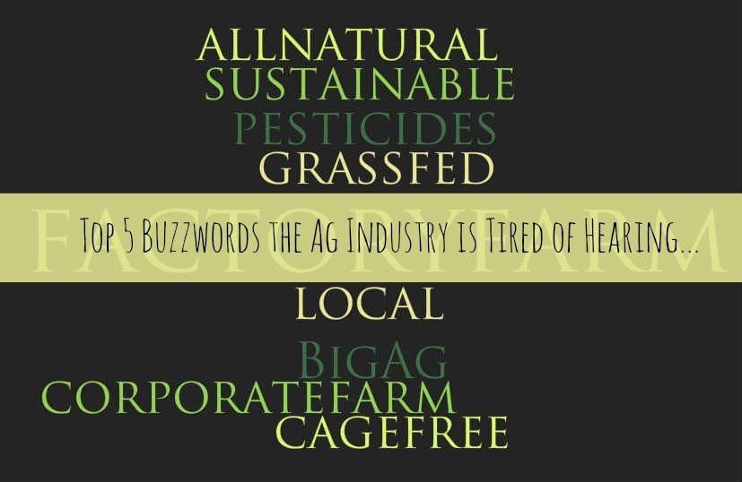 Buzzwords the Ag Industry Is Tired of Hearing.jpg.jpg