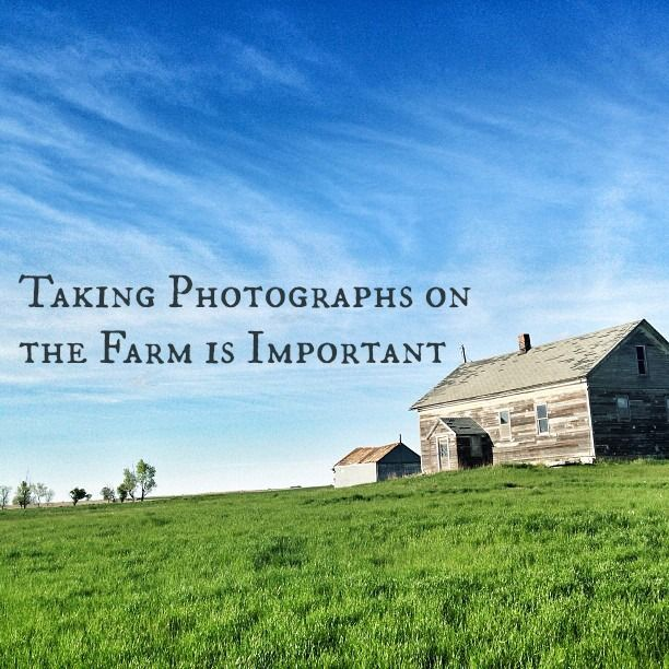 Taking Photographs on the Farm.jpg.jpg